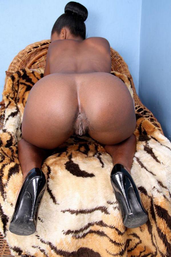 Big Butts Black Rump Dinotube 1